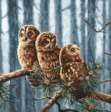 Load image into Gallery viewer, Owls Family Cross Stitch Kit