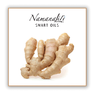 Ginger Root Essential Oil Single (10ml)