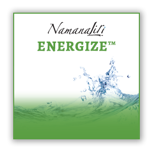 ENERGIZE™ - Liquid Fulvic Mineral Supplement (32oz)