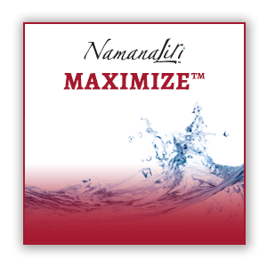 MAXIMIZE™ - Liquid Fulvic Mineral Supplement w/l-Arginine (32oz)