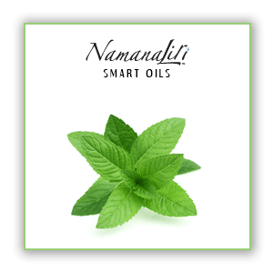 Peppermint Essential Oil Single (10ml)
