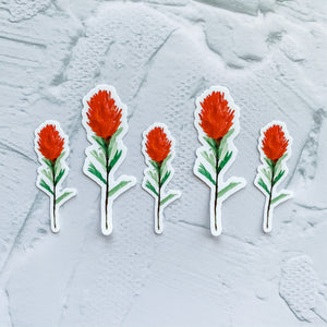 Watercolor Indian Paintbrush Flower Sticker Decal