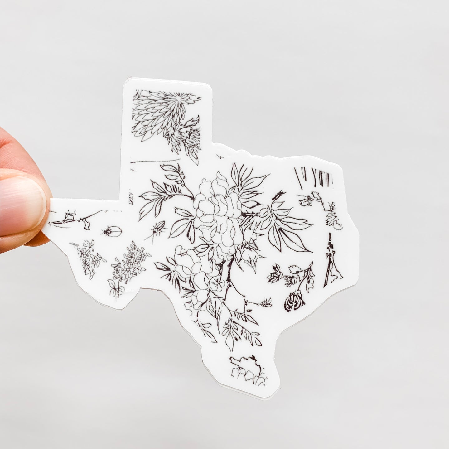 Texas State Botanical Sticker Decal