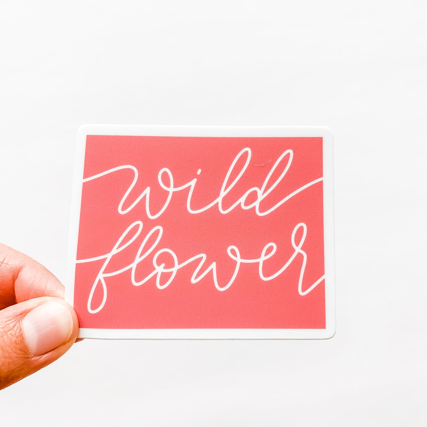 Wyoming State Wildflower Coral Sticker Decal