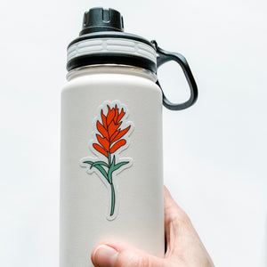 Indian Paintbrush Flower Sticker Decal