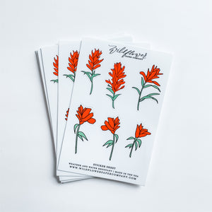 Indian Paintbrush Flower Sticker Sheet