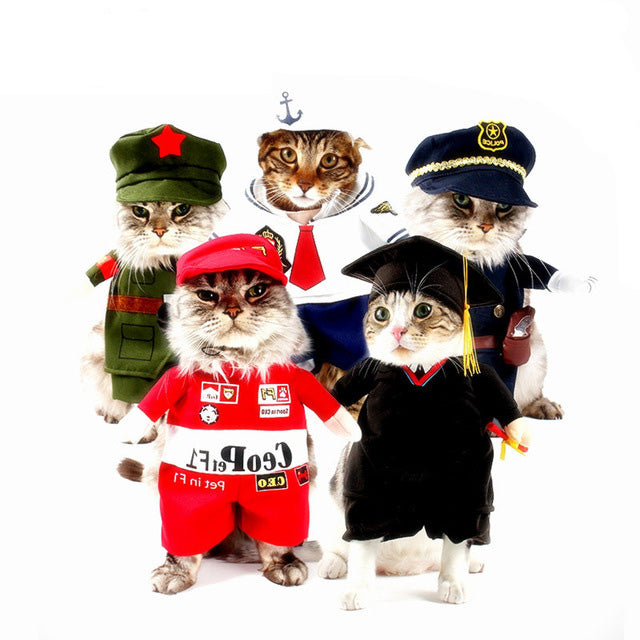 Funny Cat Clothes  Halloween Costume