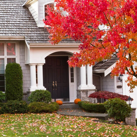 Home Improvement Projects For Autumn Season Blog Image by SafeMend