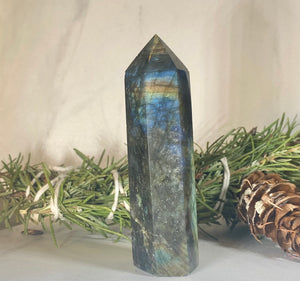 Labradorite Crystal Tower Point #2