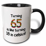 3Drose Mug_184964_4 Turning 65 Is Like Turning 18 In Celsius Humorous 65Th Birthday Gift Two Tone Black Mug, 11 Oz, Black/White