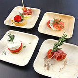 Dukrey Disposable Palm Leaf Plates, Square | Compostable + Biodegradable | 6 Inch, 25 Count
