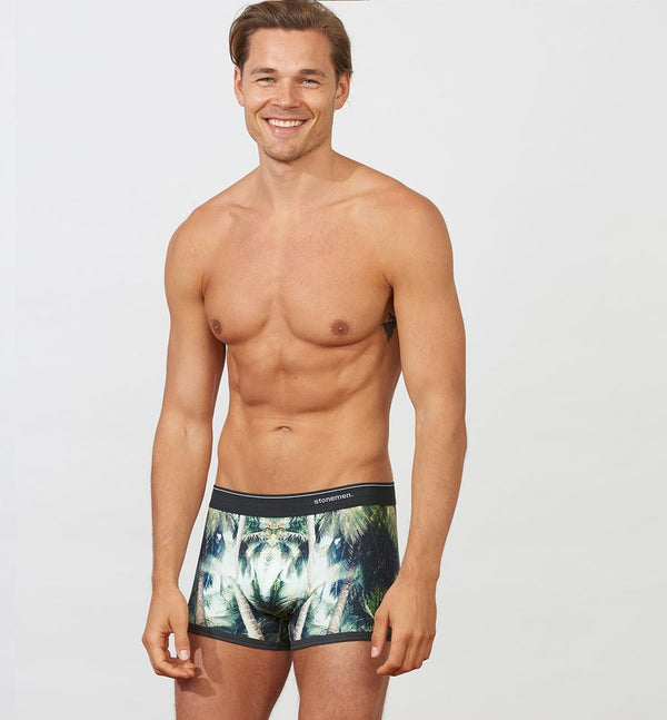 Stonemen Boxer Brief / Shady Palms