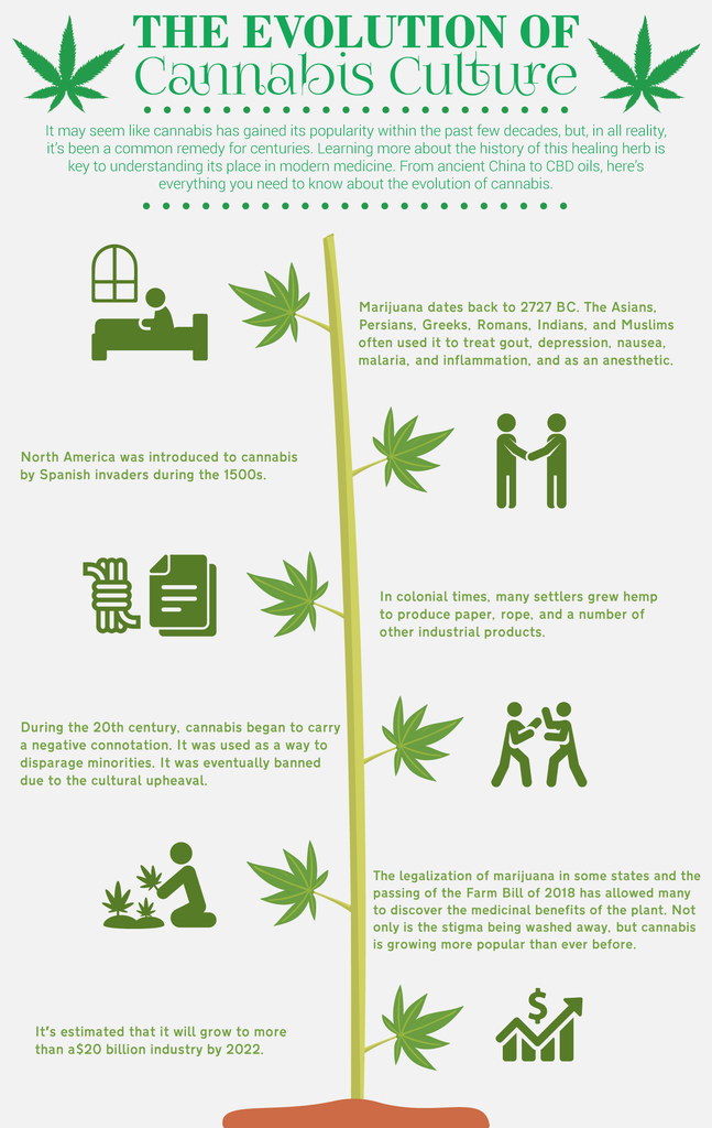 The Evolution of Cannabis Culture