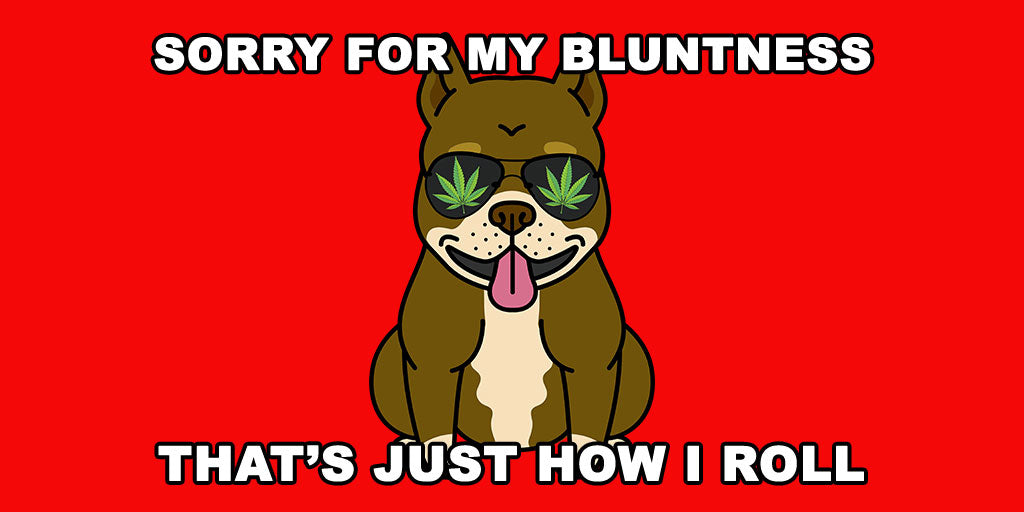 Sorry for my bluntness that's just how I roll