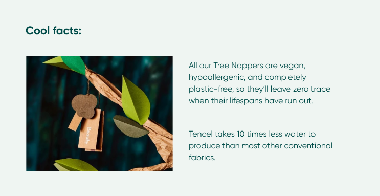 Cool facts about Tree Napper
