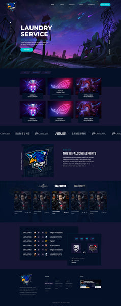 ePRO3 Falcons eSport exclusive Webdesign