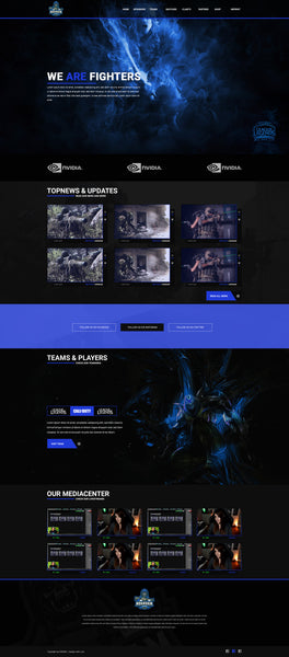 NewFight eSport Design