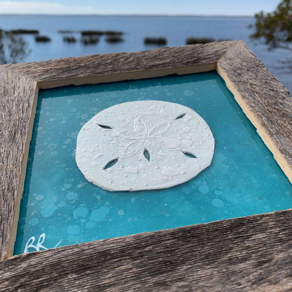 Sand Dollar, a Painted Window by Rebeccah Rogers | Outer Banks Artisans