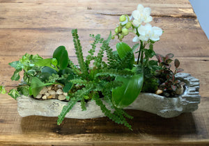 Mixed Planter in faux bois log