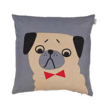 Load image into Gallery viewer, Spira Friends cushion/cover - Penny