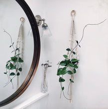 Load image into Gallery viewer, Macrame Pot Hanger - Ayra Ecru