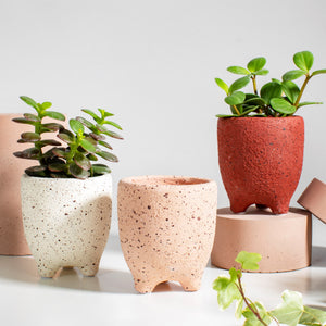 Small Speckled Leggy Planter