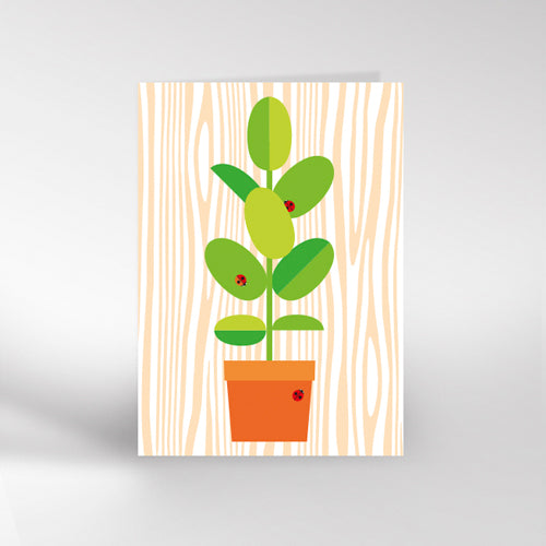 Pot Plant Greetings Card