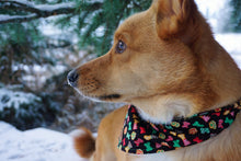 Load image into Gallery viewer, Sugar Cookies Paws & Bones - Bandana