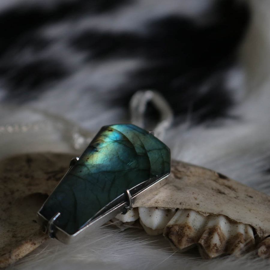 The Dearly Beloved - Labradorite coffin Pendant