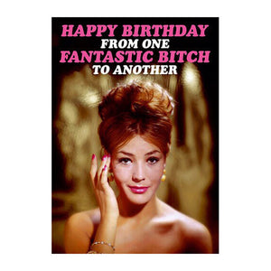 Happy Birthday From One Fantastic Bitch To Another Greeting Card