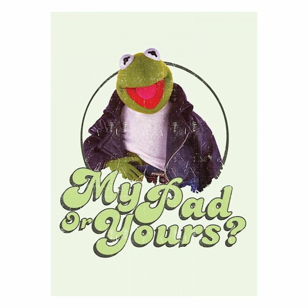 The Muppet Show Kermit The Frog Fridge Magnet