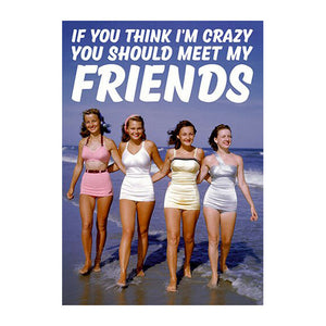 If You Think I'm Crazy You Should Meet My Friends Greeting Card
