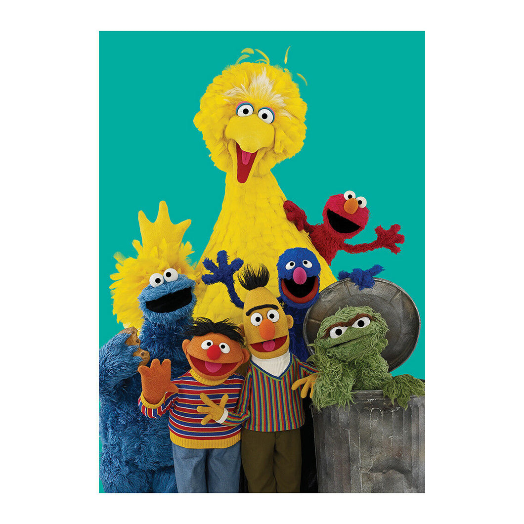 Sesame Street Characters Greeting Card