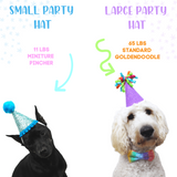 Numbered Dog Party Hats