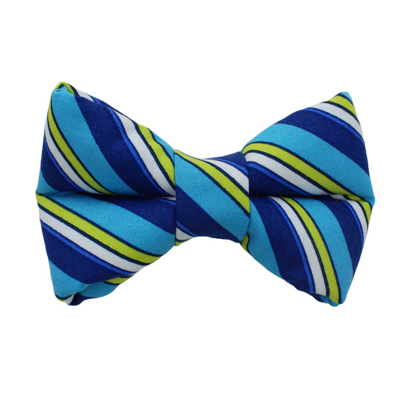 Blue And Green Stripes Bow Tie
