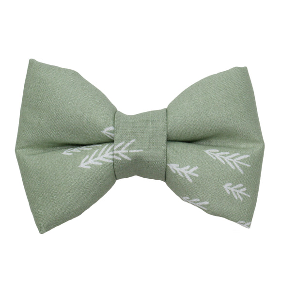 Evergreen Bow Tie