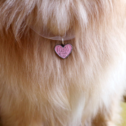 Best Fur Friend Pet Tag