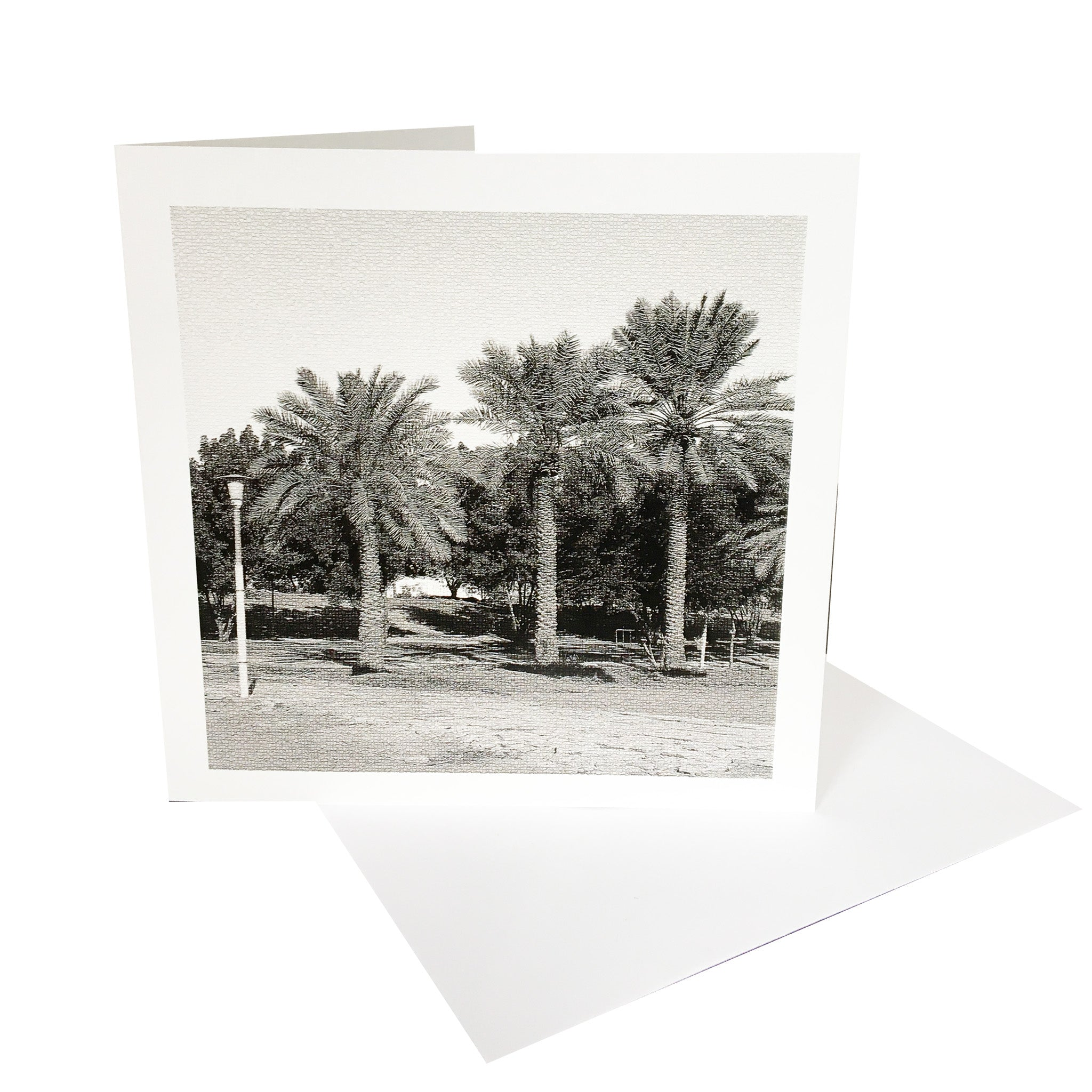 Palm Trees Greetings Card & Envelope