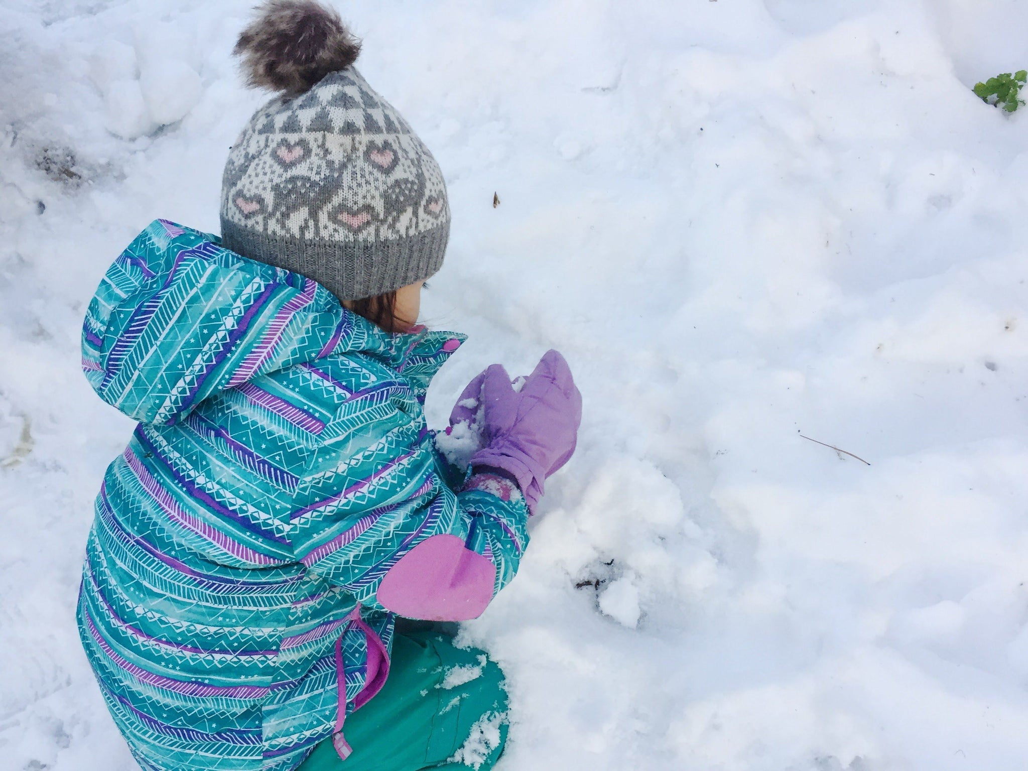 Family Winter Survival Guide