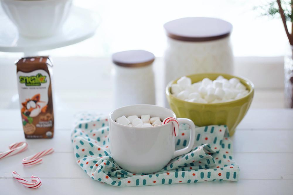 Organic Hot Chocolate Recipe