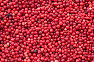 The Benefits of Cranberry Plant Protein