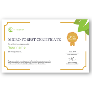 Micro Forest 200 Trees Certificate