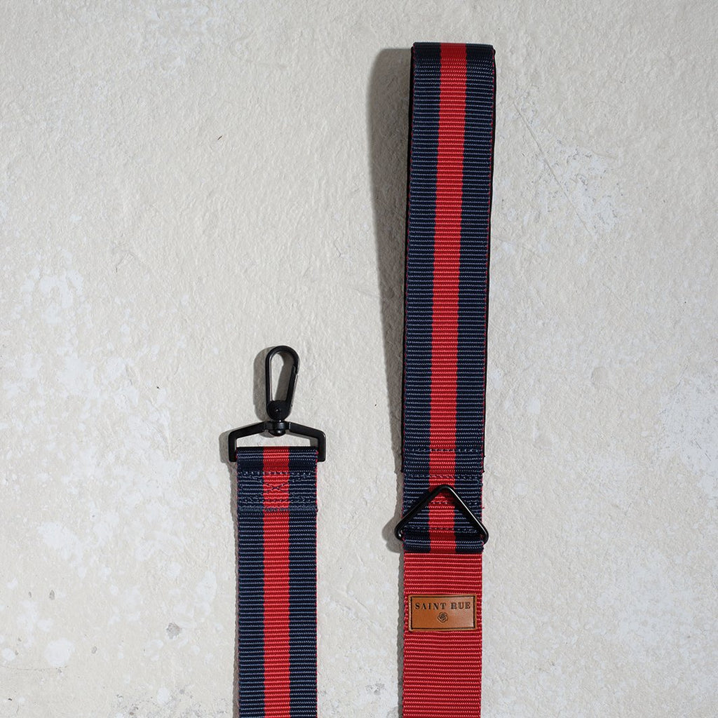 dog leash for cities