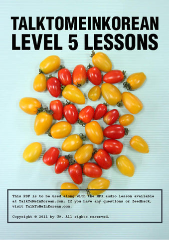 [E-book] TalkToMeInKorean Level 5 lessons (TTMIK Grammar E-books)