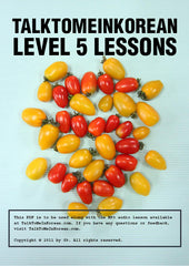[E-book] TalkToMeInKorean Level 5 Compilation