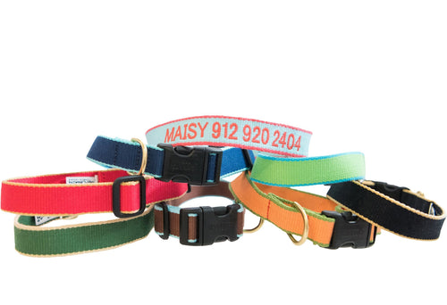 Dog Collar Dog Upcountry