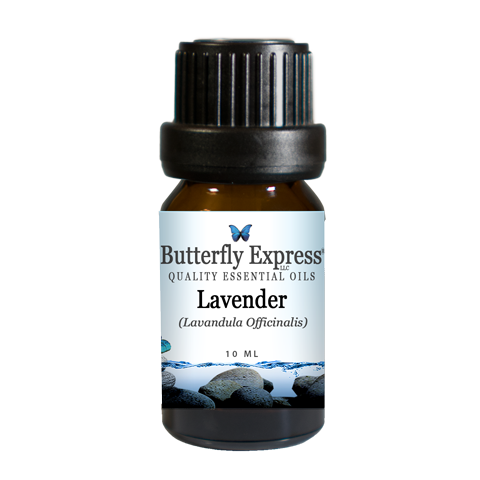 Butterfly Express Lavender Officinalis 10 ml.