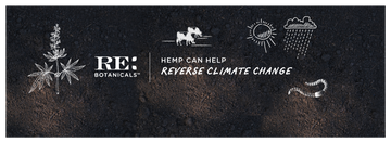 Infographic: Hemp Can Help Reverse Climate Change