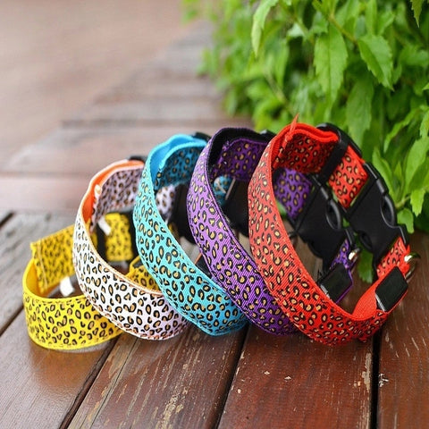 2019 Colorful Leopard Dog Collar Night LED Free Shipping!
