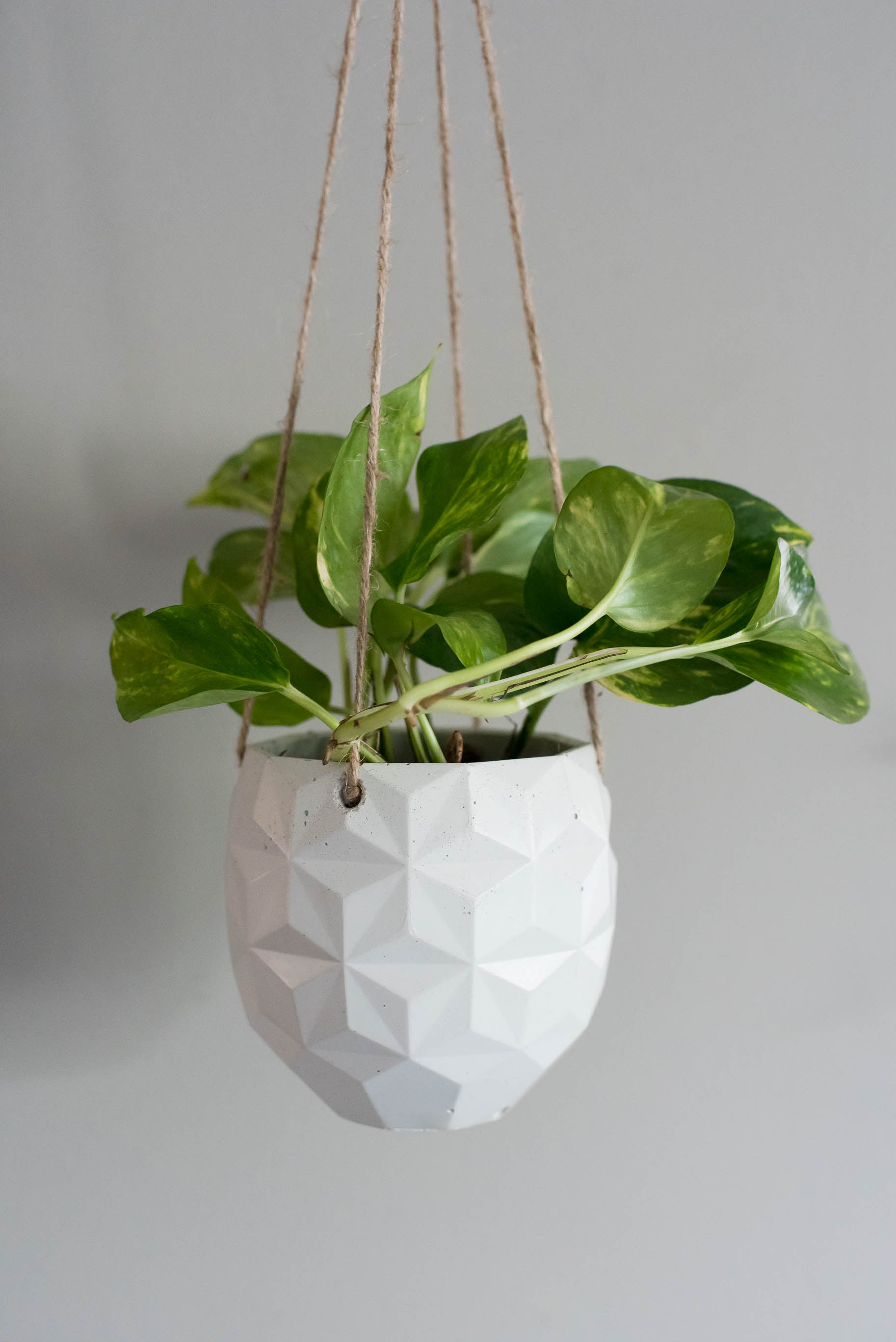 No.24| Geo Hanging Planter